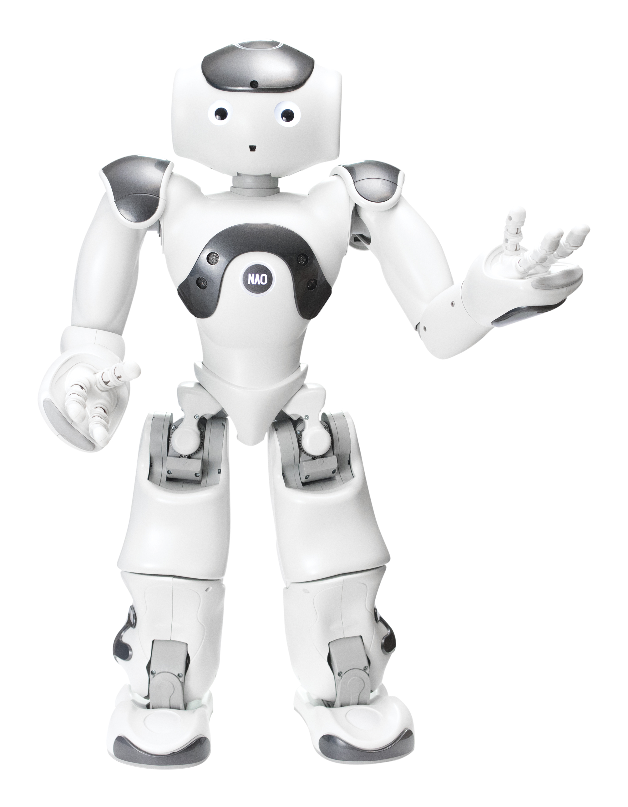 Erm Robot Humano De Nao